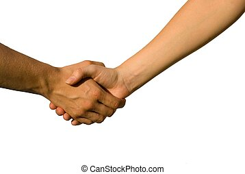 handshake - a handshake between two young hands, on white