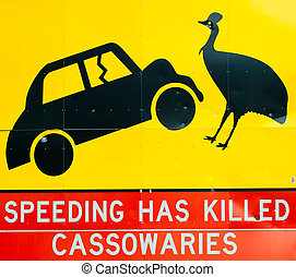 Cassowary road warning sign - A cassowary road warning sign...