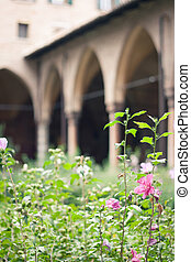 Cloister garden in summer