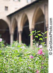 Cloister garden in summer