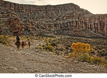 Havasu Trail in the Desert - Havasu Trail in Havasupai...