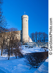Toompea tower on winter day Tallinn, Estonia. - Toompea...