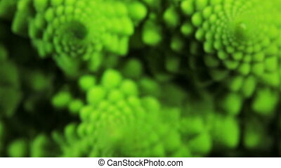 Romanesco broccoli cabbage. - Romanesco broccoli cabbage...