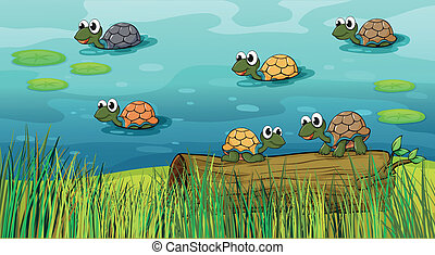 A group of turtles in the river - Illustration of a group of...