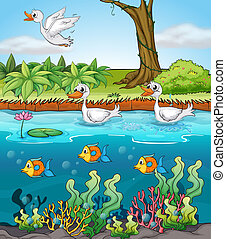 Swans and fishes - Illustration of duck and fishes