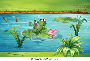 A frog - Illustration of a frog in a beautiful nature