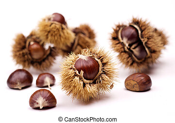 close up of chestnuts isolated on white background