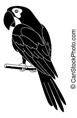 Parrot, black silhouette - Clever speaking parrot sits on a...