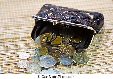 Russian coins in your purse