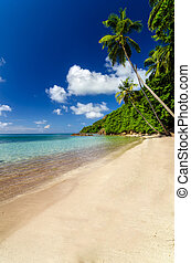 Deserted Beach - Beautiful deserted beach in San Andres y...