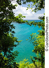 View of Sea through Trees - View of Caribbean Sea through...
