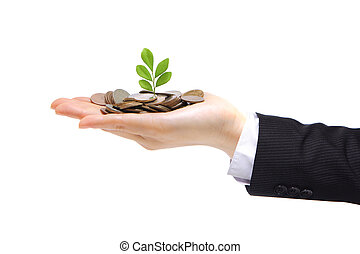 green plant sprouting from hand with money - new green plant...