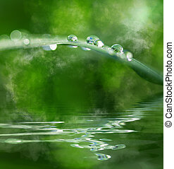 Water and water drops - Water drops and meditation