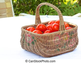 Tomato Basket 1