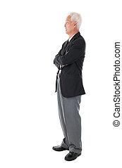 full body Asian senior businessman