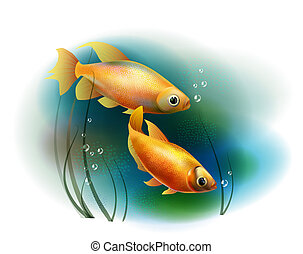 couple of goldfish in the sea