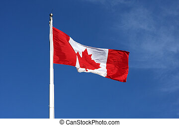 Canadian flag - The proud canadian flag high in the air on a...