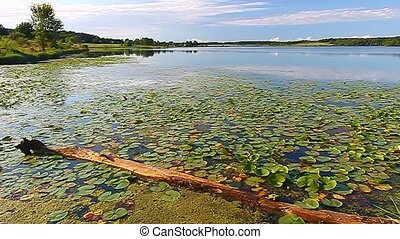 Shabbona Lake State Park Illinois - View of beautiful...