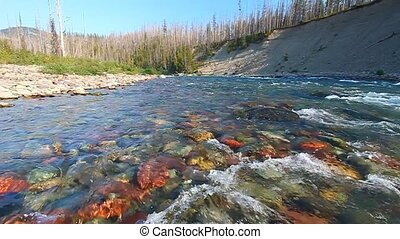 North Fork Flathead River Montana - Rapids of the North Fork...