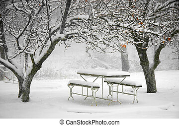 picnic place in winter
