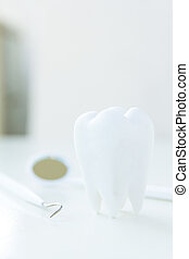 molar,dental concept  - close up of molar,dental concept