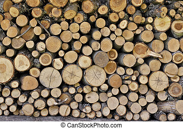 Background with logged trees texture