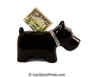 little dog moneybox - doggy moneybox with a diamond necklace