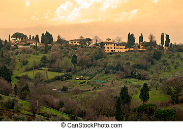 Typical Tuscan Landscape, Florence - Typical tuscan...