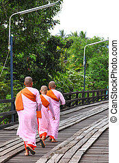 Female monks going out for food offering from other people