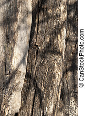 Old wooden beams - Old wooden stacked weathered beams as...