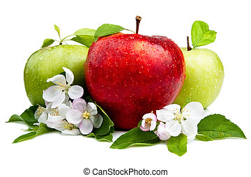 Red Apple in Front of Two Green Apples with flowers, Leaf...