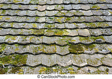 Old worn shingles with a lot of moss