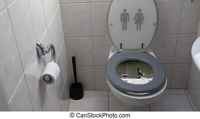 Abstract toilet - combination of toilet and ducks. Cleaner...