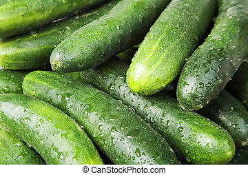 Cucumbers - Closeup of several green cucumbers filling the...