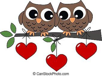 dois, doce, corujas, Amor