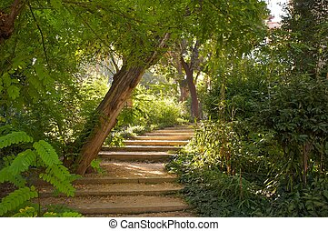 Stair in a beautiful park