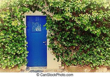 Blue door with plants around it.