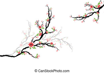 Cherry Blossoms Tree - Beautiful cherry blossoms tree...