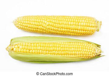 蔬菜, 新鮮, 玉米