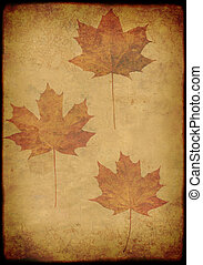 Grunge background with maple leafs
