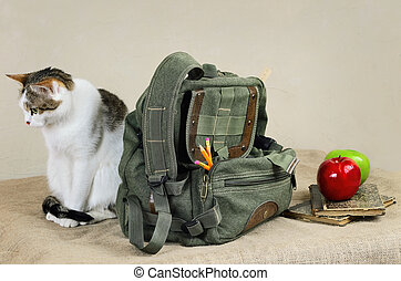 Cat And Backpack - Cat Sitting Near The Backpack On The...
