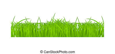 Flower and grass Borders set. vector illustration