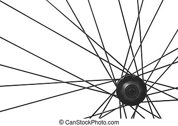 bicycle spoke detail - bicycle wheel spoke detail isolated