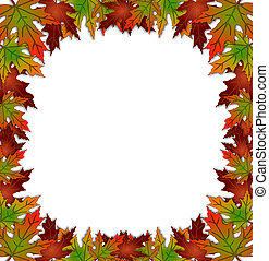 Autumn Fall Leaves Border Square - Illustration composition...