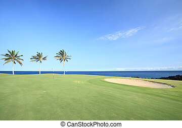 Golf Course In Tropics