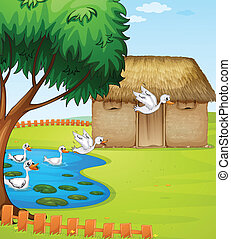 Ducks, a house and a beautiful landscape - Illustration of...