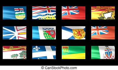 Canadian States Flag Waving