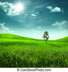 Beauty meadow. Abstract summer landscape for your design