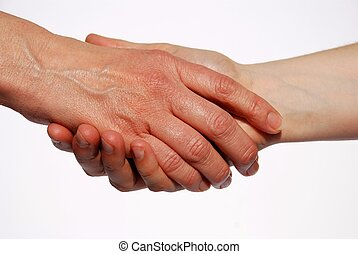 two hands shaking - a handshake between two hands, on white