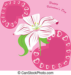 white lily on pink